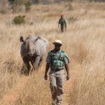 Comment se préparer à un projet de conservation en Afrique