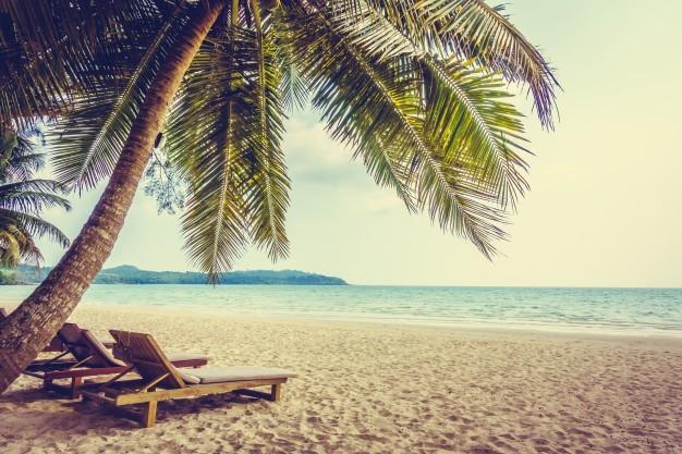 Prévoyez vos vacances de printemps à l'avance